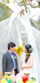 SATOYAMA WEDDING