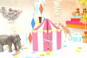 COME TO THE CIRCUS|サーカステントの招待状|バースデー事例|daydressing|ARCHDAYS
