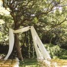HAPPY TREE WEDDING