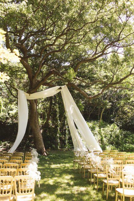 happy tree wedding wedding arch days