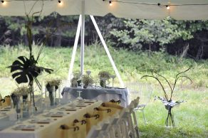 wedding_outdoor_17_archdays