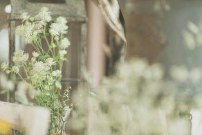 wedding_5_archdays_clariel