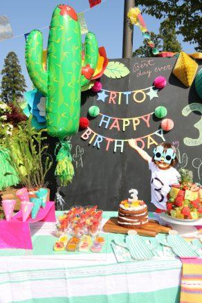 fiesta_kids_party_birthday_04_archdays