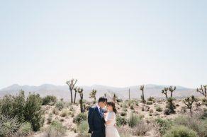wedding_California_31_archdays