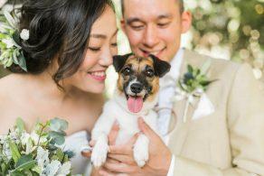 wedding_11archdays_spain