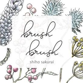 brush brush  (shiho sakurai)