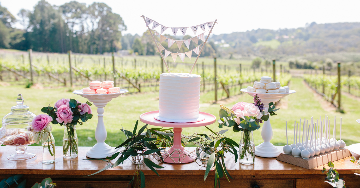 FIRST BIRTHDAY IN A RUSTIC VINEYARD