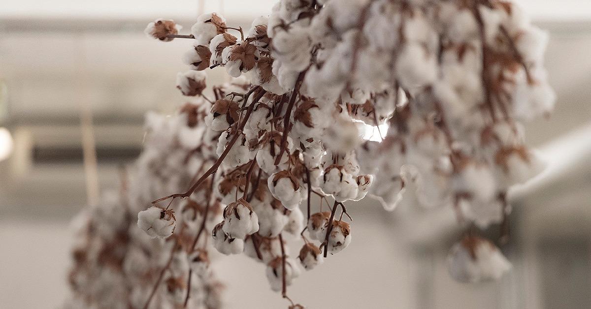 冬ウェディングの会場装飾に。装花やテーマカラーのアイディア