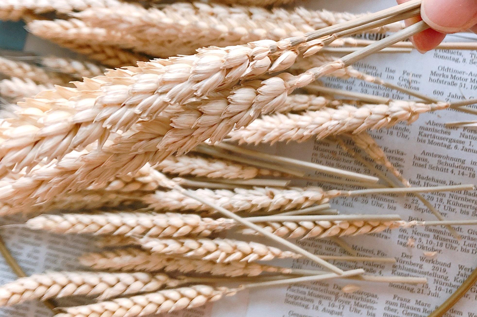 麦リースの作り方