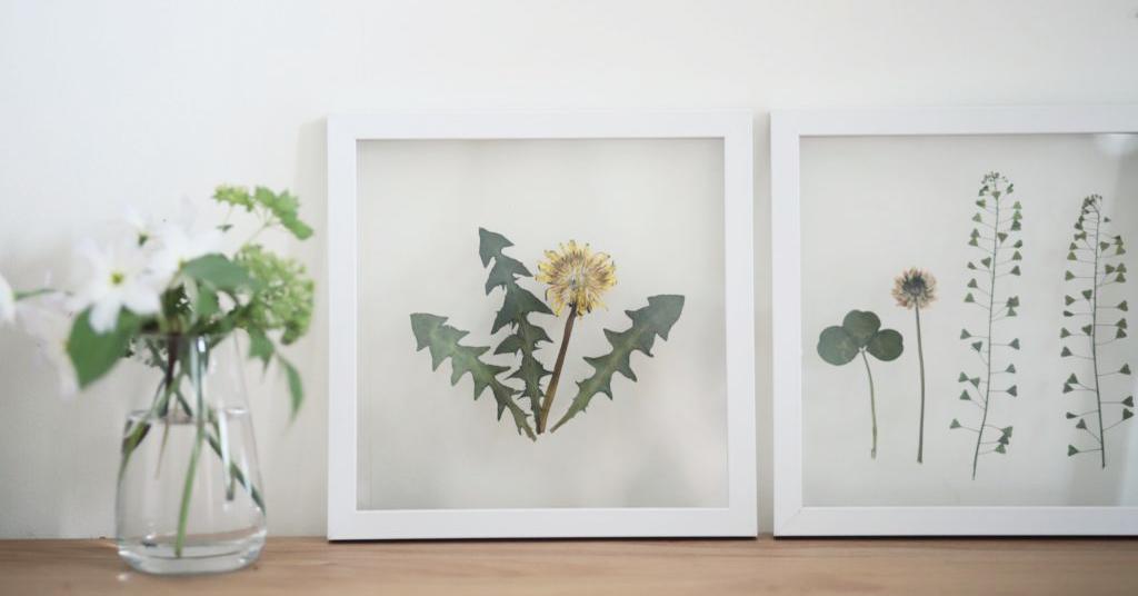 お散歩の思い出をおうちに飾ろう♪こどもと作れる「押し花」アイテム