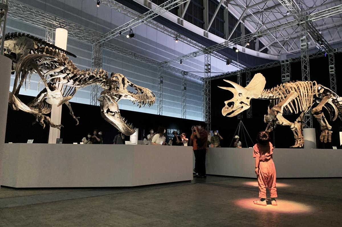 恐竜科学博