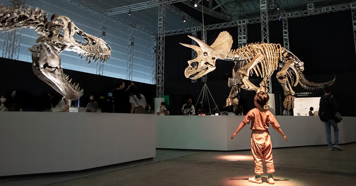 """親子で夢中になれる!今夏絶対行くべき""""DinoScience 恐竜科学博""""のお出かけレポ"""
